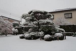 成就院境内(雪)